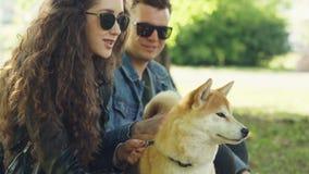 愉快的夫妇女朋友和男朋友在公园和谈轻拍逗人喜爱的小狗 妇女和人是佩带偶然 股票录像