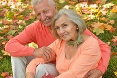 愉快的夫妇成熟 免版税图库摄影