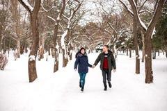 愉快的夫妇获得乐趣在冬天公园 免版税库存图片