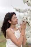 愉快的女孩和一棵开花的樱桃树 图库摄影