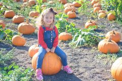 愉快的女孩坐南瓜在农田补丁 库存照片