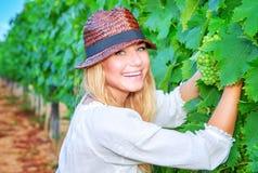 愉快的女孩采摘葡萄 免版税图库摄影