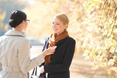 愉快的女实业家交谈与同事在公园在晴天 免版税库存图片