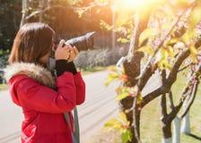 愉快的妇女旅客由与樱花树的照相机拍照片在度假,当春天时 图库摄影