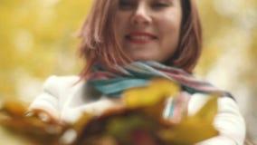 愉快的妇女有乐趣投掷的叶子在慢动作的秋天,微笑 股票视频