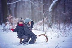 愉快的孩子在一个冬天停放,使用与爬犁一起 免版税图库摄影