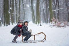 愉快的孩子在一个冬天停放,使用与爬犁一起 图库摄影