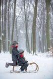 愉快的孩子在一个冬天停放,使用与爬犁一起 免版税库存照片