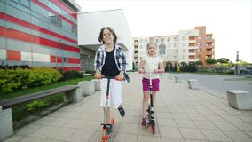 愉快的孩子在室外反撞力的滑行车乘坐 他们获得一起使用很多的乐趣 股票视频