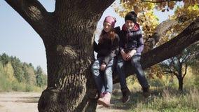 愉快的孩子坐大树和无忧无虑的摇摆的腿在秋天天 股票视频