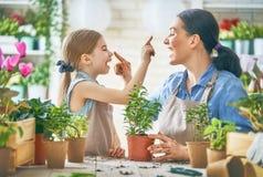 愉快的家庭在春日 免版税库存图片