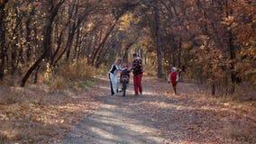 愉快的家庭在秋天公园走 股票视频