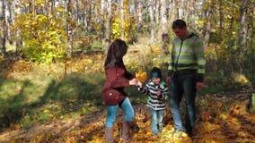 愉快的家庭有休息在秋天公园 影视素材
