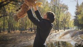 愉快的家庭爸爸投掷儿童儿子在秋天叶子秋天的步行的在公园 股票录像