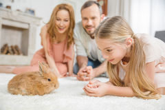 愉快的家庭用兔子 免版税库存图片