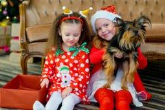 愉快的小女孩和狗在圣诞节 库存照片