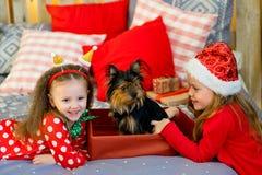 愉快的小女孩和狗在圣诞节 免版税库存图片