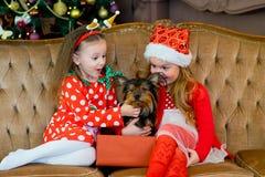 愉快的小女孩和狗在圣诞节 免版税库存照片