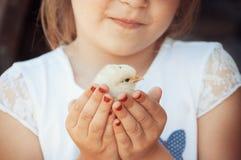 愉快的小女孩在他的手上拿着一只鸡 有波尔的孩子 免版税图库摄影