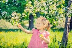 愉快的小女孩在苹果树庭院里 免版税库存图片