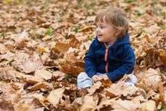 愉快的小孩,笑和使用在秋天的男婴 免版税库存照片