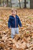 愉快的小孩,笑和使用在秋天的男婴 库存图片
