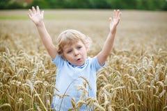 愉快的小男孩获得乐趣在麦田在夏天 免版税库存图片