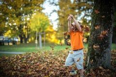 愉快的小男孩获得使用与下落的金黄叶子的乐趣 免版税库存图片