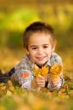 愉快的小男孩采摘叶子 免版税库存图片