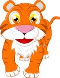 愉快的小的老虎 免版税库存照片