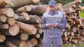 愉快的工作者日志记录器或木匠有大金钱在堆日志,被锯的木头附近 成功的事务的概念 股票视频