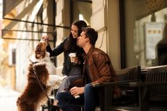 愉快的年轻人画象和妇女有步行室外与他们的宠物,喂养它与可口的事,坐椅子 免版税图库摄影