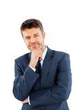 愉快的微笑的商人画象 免版税图库摄影