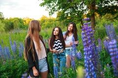 愉快的微笑的朋友画象室外的周末 获得三个美丽的年轻愉快的最好的朋友乐趣,微笑 免版税库存照片