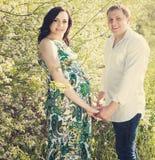 年轻愉快的怀孕的夫妇在开花的春天停放 库存照片