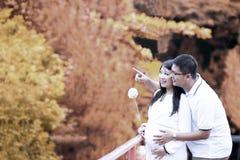 愉快的怀孕的夫妇在秋天 库存图片