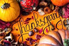 愉快的感恩天假日背景明信片概念聚宝盆充分的收获果菜类手拉的贺卡秋天 图库摄影