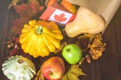 愉快的感恩天在加拿大 菜、南瓜、南瓜、苹果、槭树和橡木叶子,在木背景的橡子 Harve 图库摄影