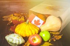 愉快的感恩天在加拿大 菜、南瓜、南瓜、苹果、槭树和橡木叶子,在木背景的橡子 Harve 库存图片
