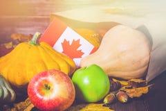 愉快的感恩天在加拿大 菜、南瓜、南瓜、苹果、槭树和橡木叶子,在木背景的橡子 Harve 库存照片