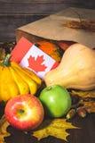 愉快的感恩天在加拿大 菜、南瓜、南瓜、苹果、槭树和橡木叶子,在木背景的橡子 Harve 免版税库存图片