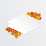 愉快的感恩标签美丽的槭树叶子 库存图片