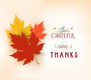 愉快的感恩 与叶子的秋天背景 皇族释放例证