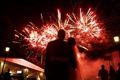 愉快的拥抱的观看美丽的五颜六色的firewo的新娘和新郎 免版税库存照片