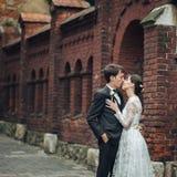 愉快的新娘和新郎在一个公园在他们的婚礼之日 库存图片