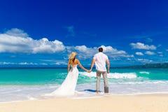 愉快的新娘和新郎在一个热带海滩 免版税图库摄影