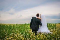 愉快的新娘和新郎在一个美好的领域在花中 库存图片