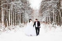 愉快的新娘和新郎在冬天婚礼之日 图库摄影