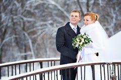 愉快的新娘和新郎在冬日 免版税库存照片