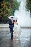 愉快的新娘和新郎在婚礼步行白色伞 免版税库存照片